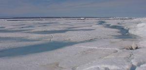 Glaciar polo