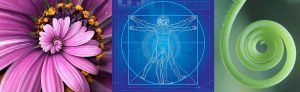 cabecera-geometria