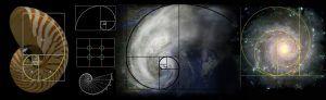 cabecera-geometria-numero-oro