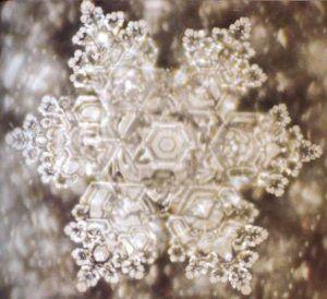 naturaleza-cristal-3