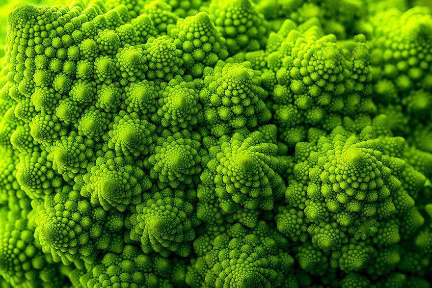 naturaleza-fractal-11